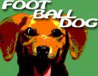 الكلب فى الملعب